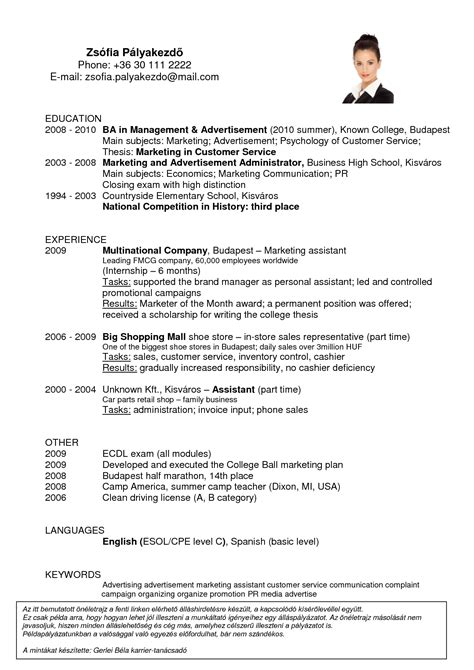 resume exles of cashier resume ixiplay free resume