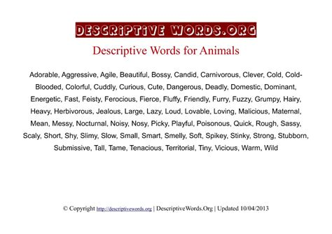 adjectives for dogs list of adjectives for dogs breeds picture
