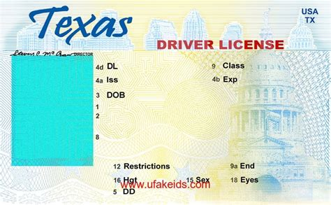 Drivers License Template by New Drivers License Template Incheonfair