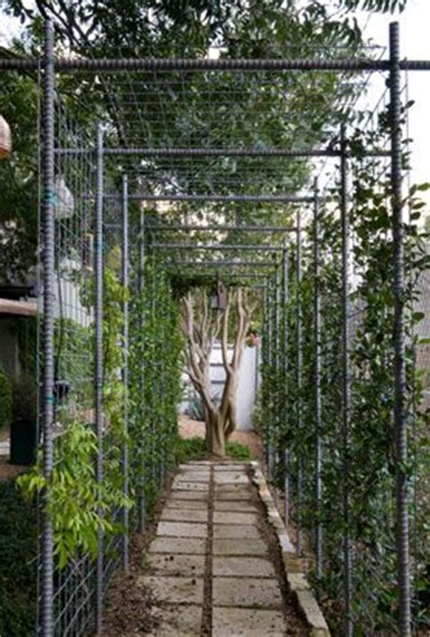 Garden Arch Rebar Fencing Vines And Gardens On