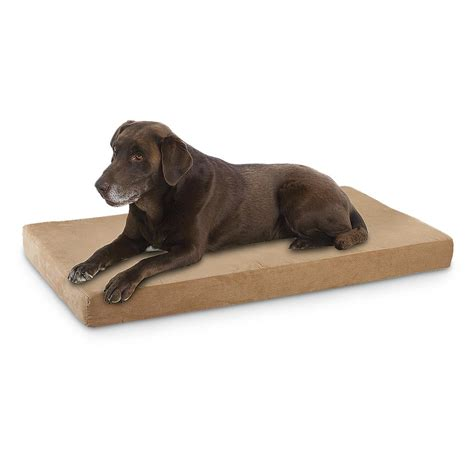 orthopedic pet bed dogpedic orthopedic pet bed 212653 kennels beds at