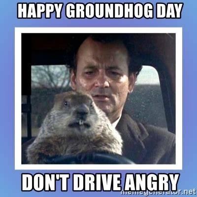 groundhog day you don t me happy groundhog day don t drive angry punxsutawney phil
