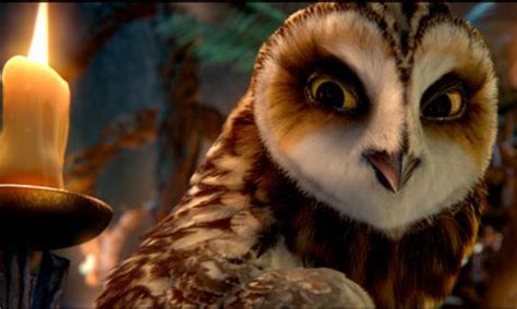 Owl Guardian legend of the guardians the owls of ga hoole the