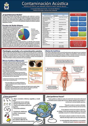 best science poster aos 3 practical investigation mullauna college pe science