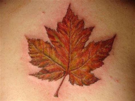 canadian maple leaf tattoo designs maple leaf picture at checkoutmyink