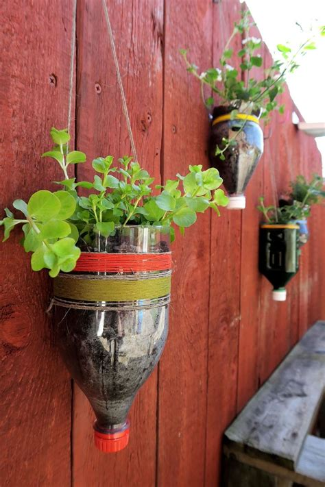 upcycled bottle planters hometalk
