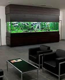 acuarios en casa los 17 acuarios m 225 s sorprendentes para instalar en casa