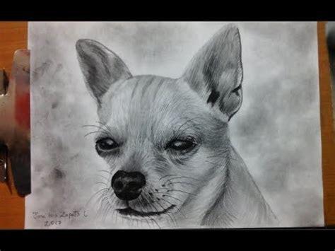 dibujo de  perro chihuahueno camara rapida