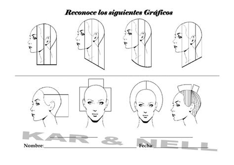 cutting diagrams for a shag cut 1000 images about diagram haircut on pinterest