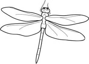 dragonfly coloring pages detailed dragonfly coloring printout dragonfly