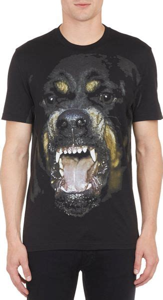 rottweiler tshirt givenchy rottweiler graphic t shirt in multicolor for black lyst