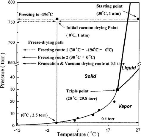 freeze drying phase diagram p t phase diagram of tert butanol and freeze drying path scientific diagram