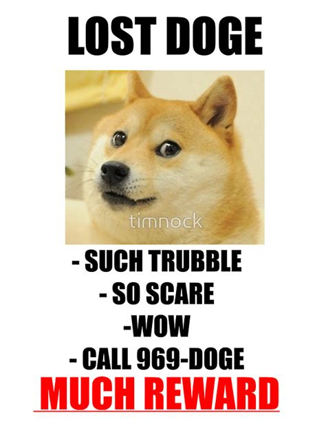 Doge Meme Original Picture - welcome to memespp com