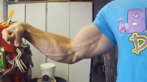 forearms workout panther