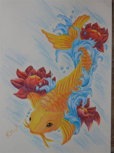 koi fish drawing color koi fish drawing color