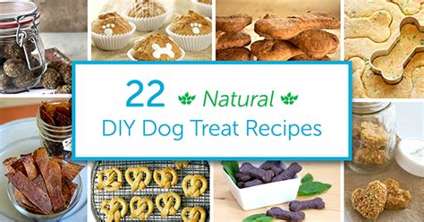 organic treat recipes 22 diy organic treat recipes