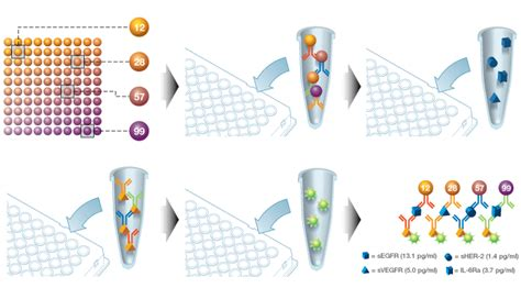 dynamic profiling of cancer drugs with bio plex 174 and