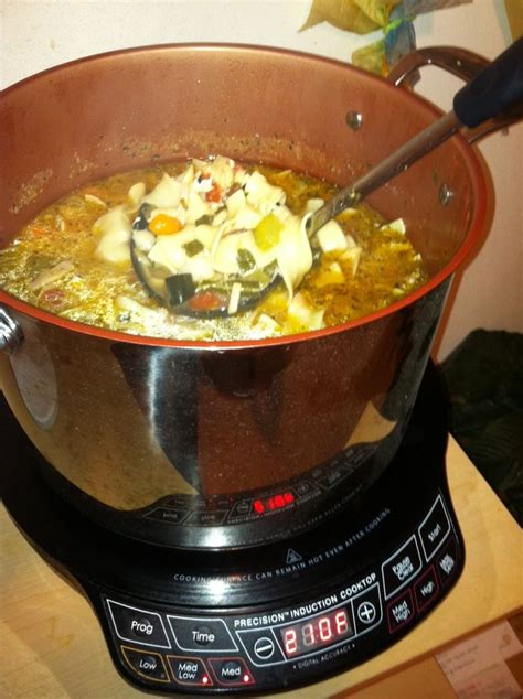 induction cooking recipes chicken 36 best food nuwave pic recipes images on pinterest