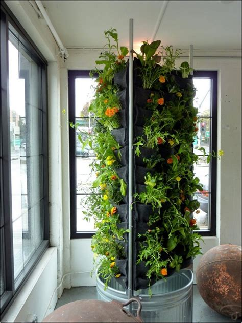 indoor vegetable garden system home  garden designs