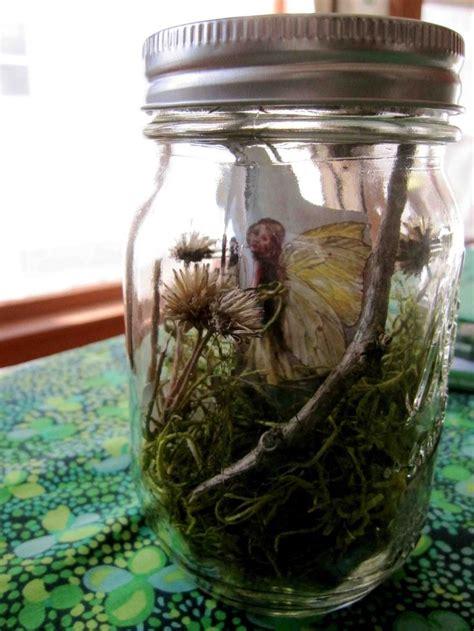 fairy  leprechaun jars library magic tree house