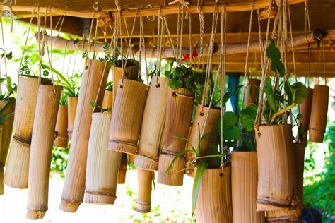 Bamboo Planter Ideas by Bamboo Products