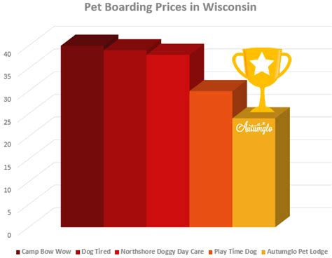 boarding near me pet hotel near me boarding near me best 25 pet resort ideas on