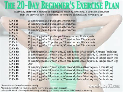 beginners home workout plan the 20 day beginner s exercise plan new to the gym no