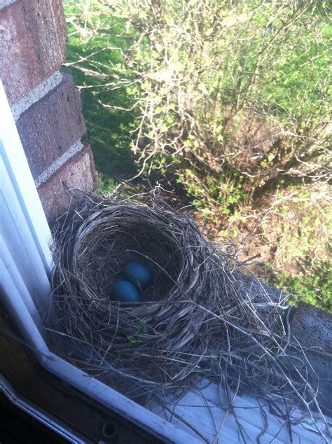birds playdough in the parsonage