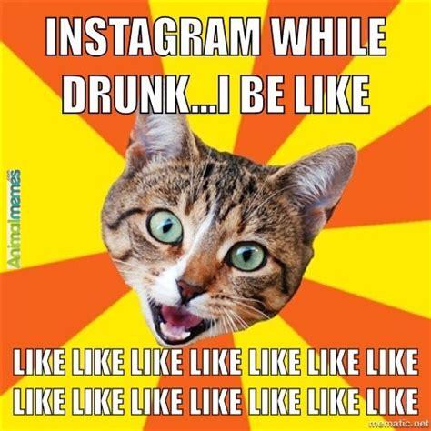 Drunk Cat Meme - drunk memes instagram image memes at relatably com