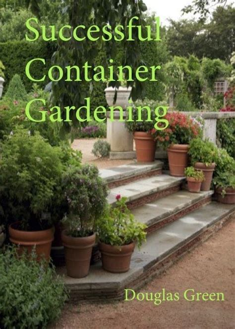 container gardening basics the seven container gardening basics every gardener should