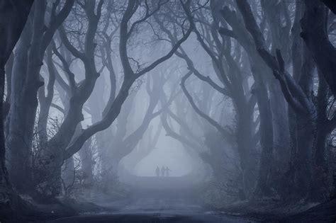 dark hedges ballymoney