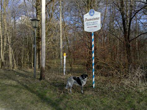 Englischer Garten Münchner Freiheit by Isarhunderunde 4 Englischer Garten Zwischen M 252 Nchner