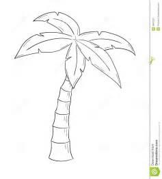 skizze der palme lizenzfreie stockfotografie bild 38631287
