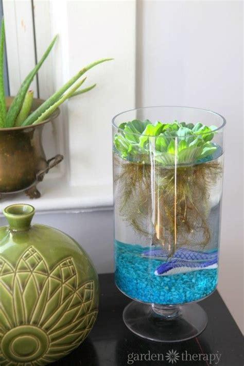 best 25 indoor water garden ideas on pinterest water