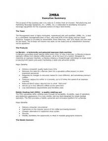 How To Write Executive Resume by Exle Of An Executive Summary Resume Template Exle