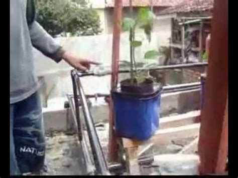 membuat instalasi hidroponik membuat instalasi hidroponik sistem drip irrigation di dak