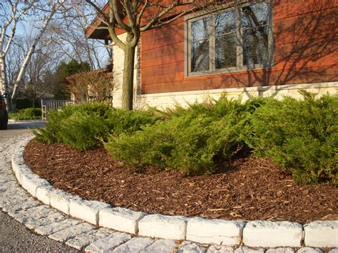 bark mulch reflections from wandsnider landscape architects