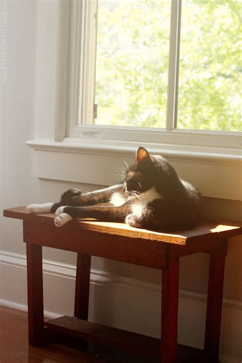 how to make a cat window seat farmhouse bench the lettered cottage