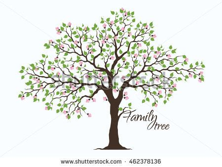 Alluring Pictures Of Family Tree Stock Images Royalty Free Vectors Shutterstock Free Clipart Royalty Free Family Tree Clip Vector Images Illustrations Istock