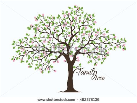 Family Tree Stock Images Royalty Free Images Vectors Shutterstock Family Tree Template Vintage Vector Illustration Stock Vector 397284052