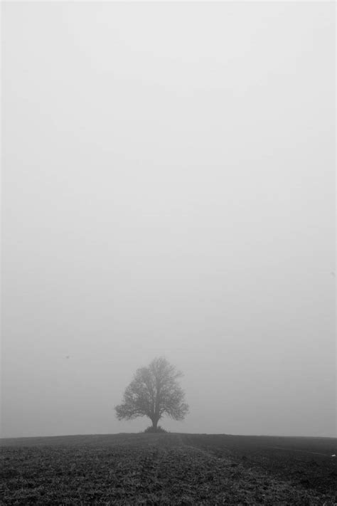 Misty air – The Leirdal Blog