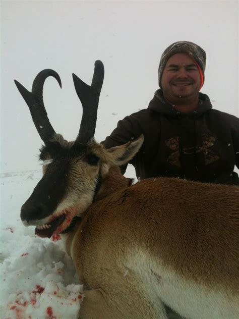 outdoor adventures worldwide wyoming antelope