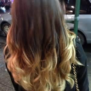 top half blonde bottom half black hair dark brown hairs