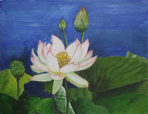 acrylic painting lotus flower lotus flower painting by selig