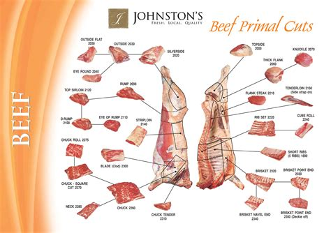 prime rib diagram 7 best images of beef cuts chart prime rib beef cuts