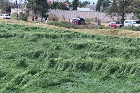 imagenes extrañas en texcoco m 233 xico descubren extra 241 as figuras en cultivos de texcoco