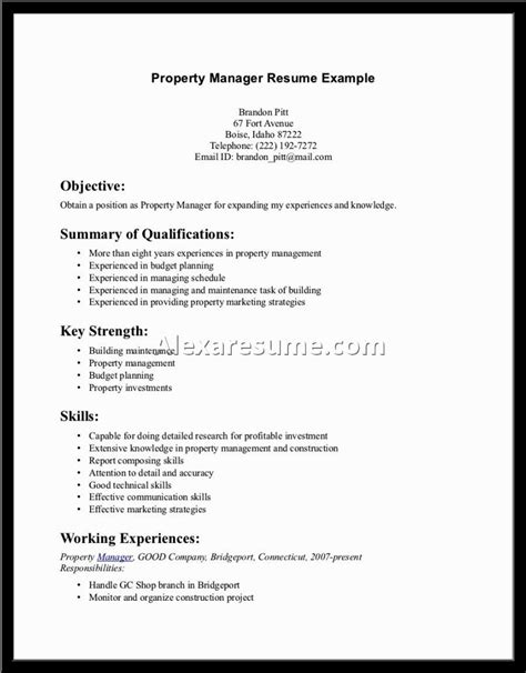 Resume Sle Summary Statement resume sle summary statement 28 images resume summary