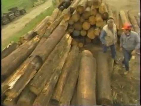 recycled lumber   telephone poles youtube