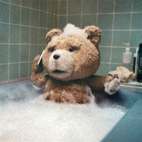 imagenes vulgares del oso ted oso ted youtube