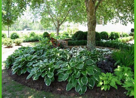 Shade Garden Design Ideas Shade Garden Design Ideas